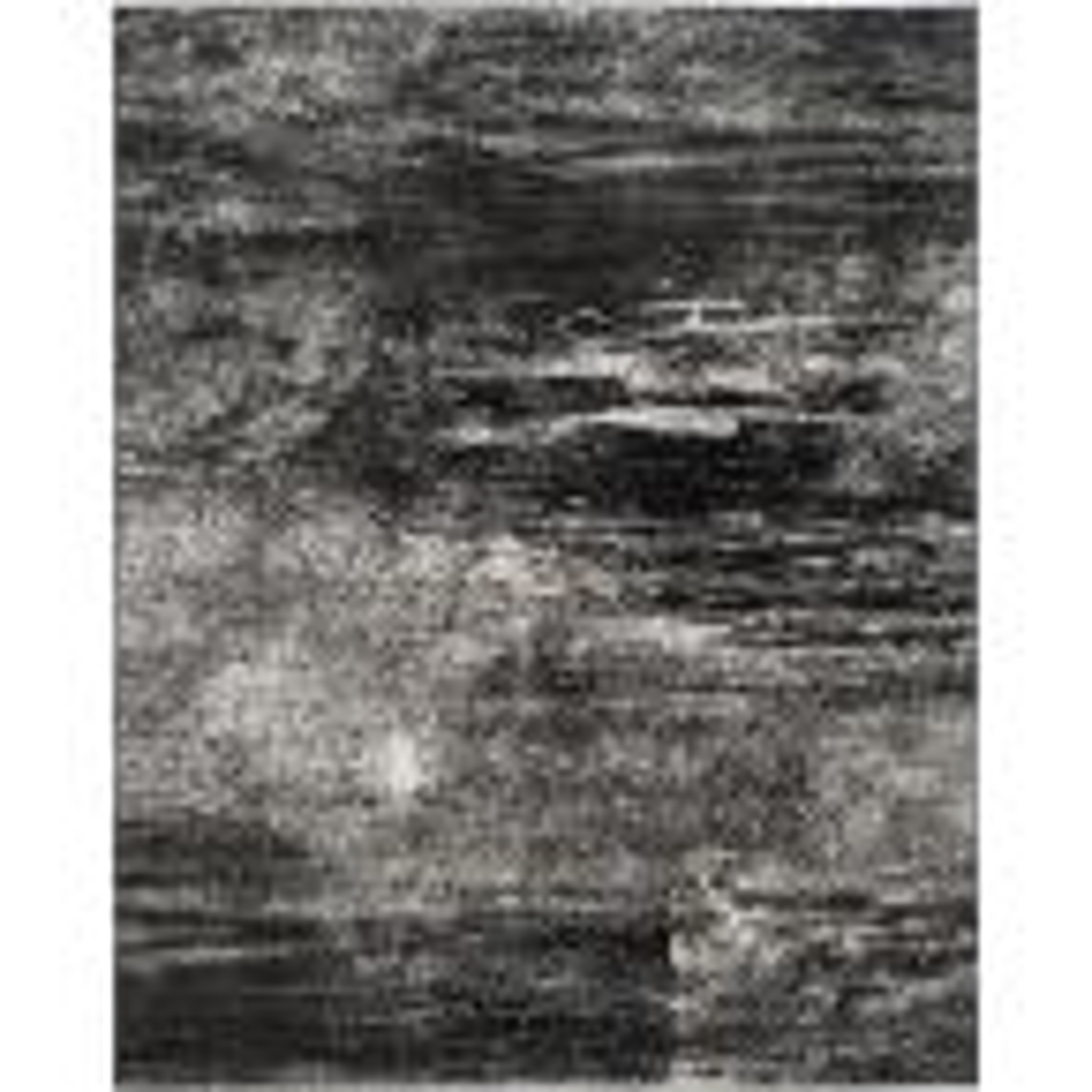 Adirondack Silver/Black 8 ft. x 10 ft. Area Rug