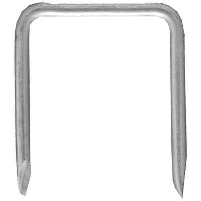 1-1/16 in. Zinc Plated Metal Staple - Silver (25-Pack)