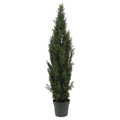 6 ft. Mini Cedar Pine Silk Tree