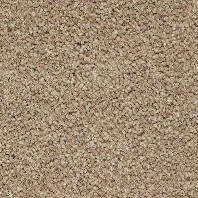 Carpet Sample - Castle II - Color Basket Weave Textured 8 in. x 8 in.