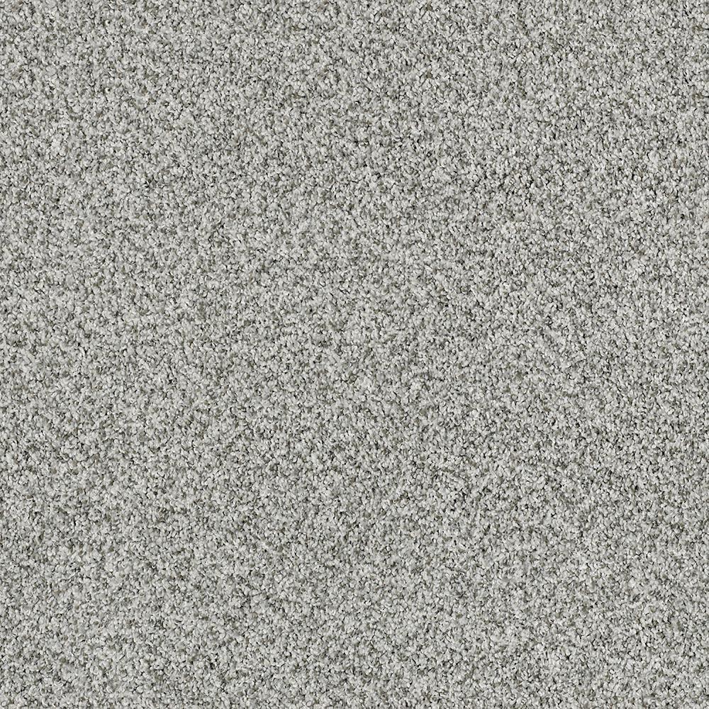 Nylon Indoor Carpet Carpet The Home Depot