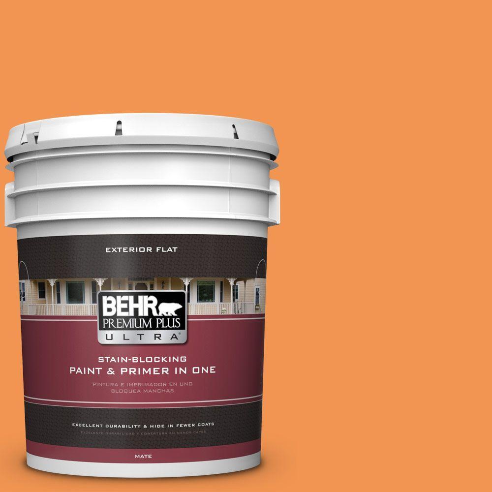 BEHR Premium Plus Ultra 5-gal. #P230-6 Toucan Flat Exterior Paint
