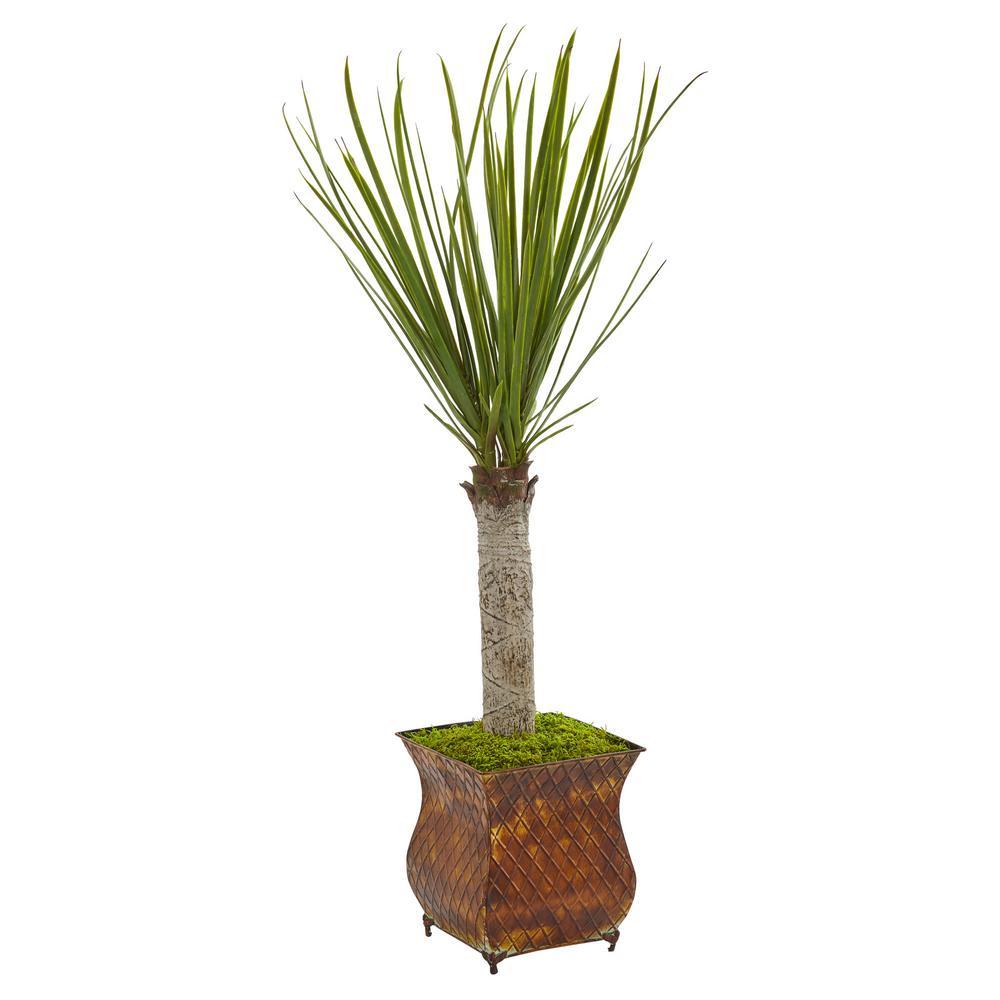 40 in. High Indoor Yucca Artificial Tree in Metal Planter