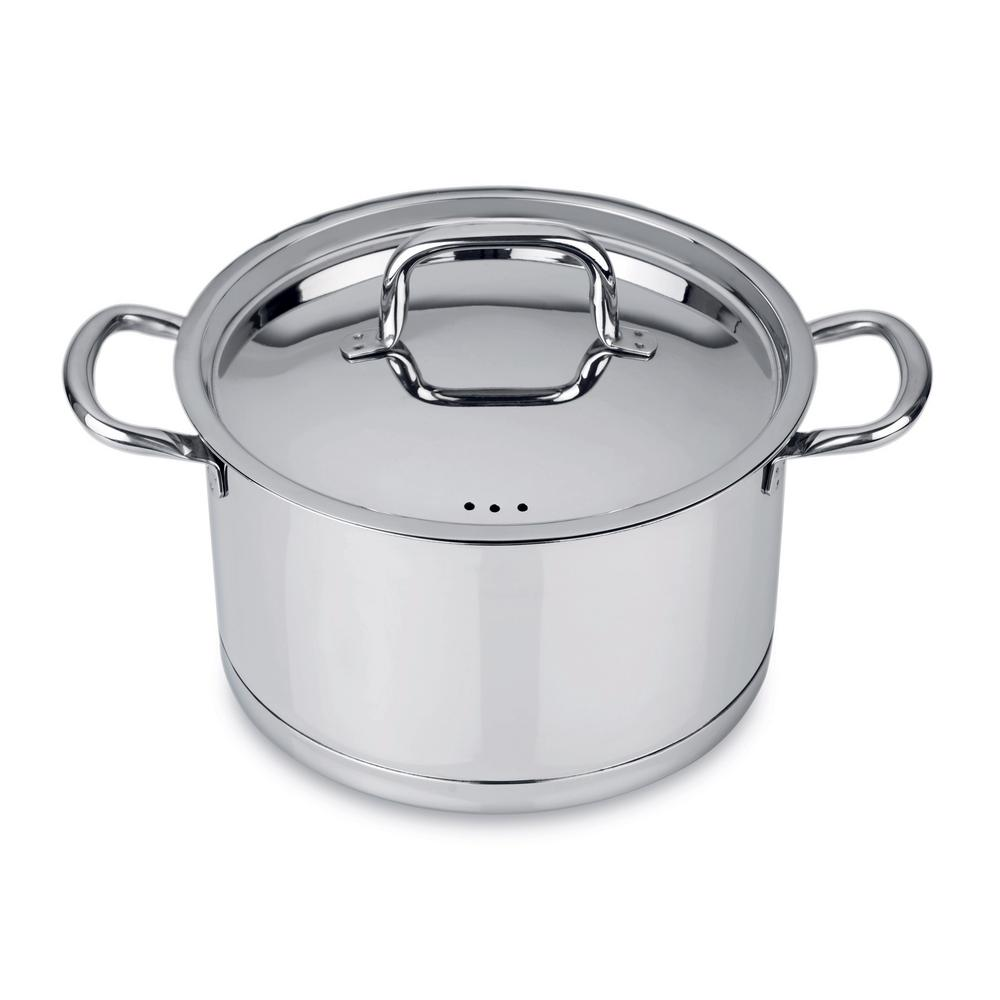 CollectNCook 10 in. Stainless Steel Stock Pot with Lid
