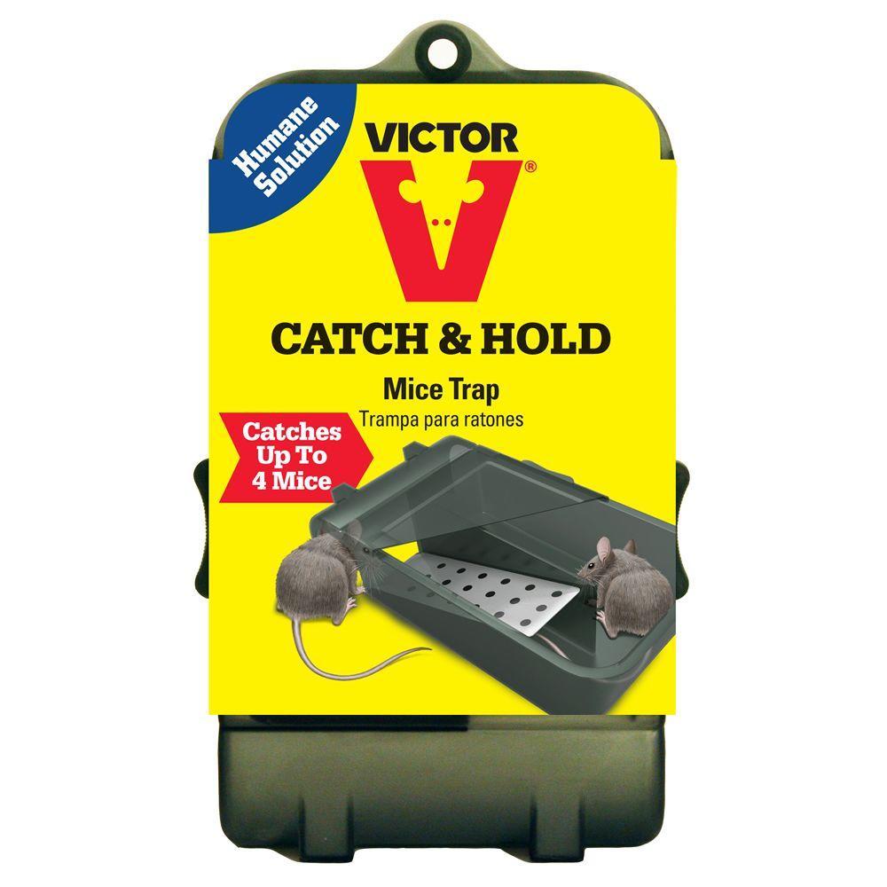 cc95258d453 Victor Multi-Catch Live Mouse Trap-M333 - The Home Depot