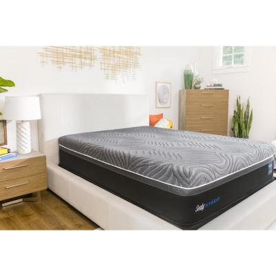 Hybrid Premium Silver Chill Queen 14 in. Plush Mattress with 5 in. Low Profile Foundation