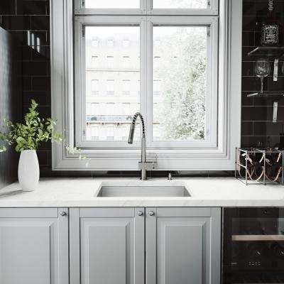 All-in-One Undermount Stainless Steel 23 in. Single Basin Kitchen Sink with Pull Down Faucet in Stainless Steel