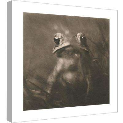 15 in. x 15 in. ''Frog'' Printed Canvas Wall Art