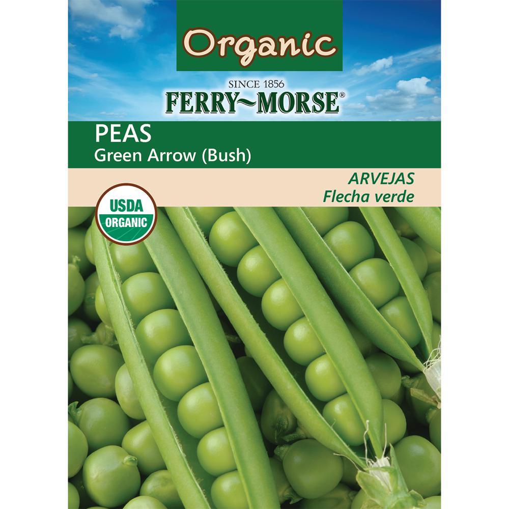 Pea Green Arrow Organic Seed