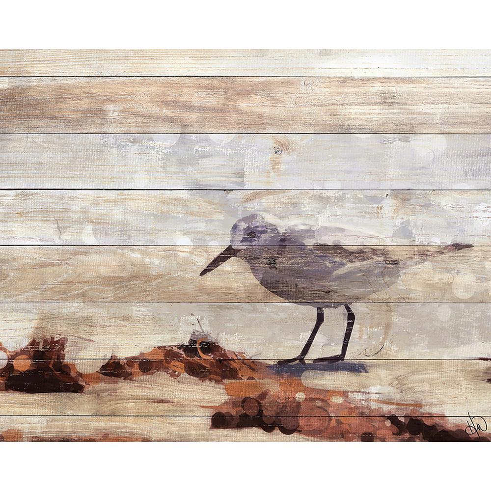 Beach & Nautical - Creative Gallery - Medium (20-40 in.) - Canvas ...