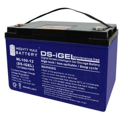 12-Volt 100 Ah Sealed Lead Acid (SLA) Rechargeable GEL Battery