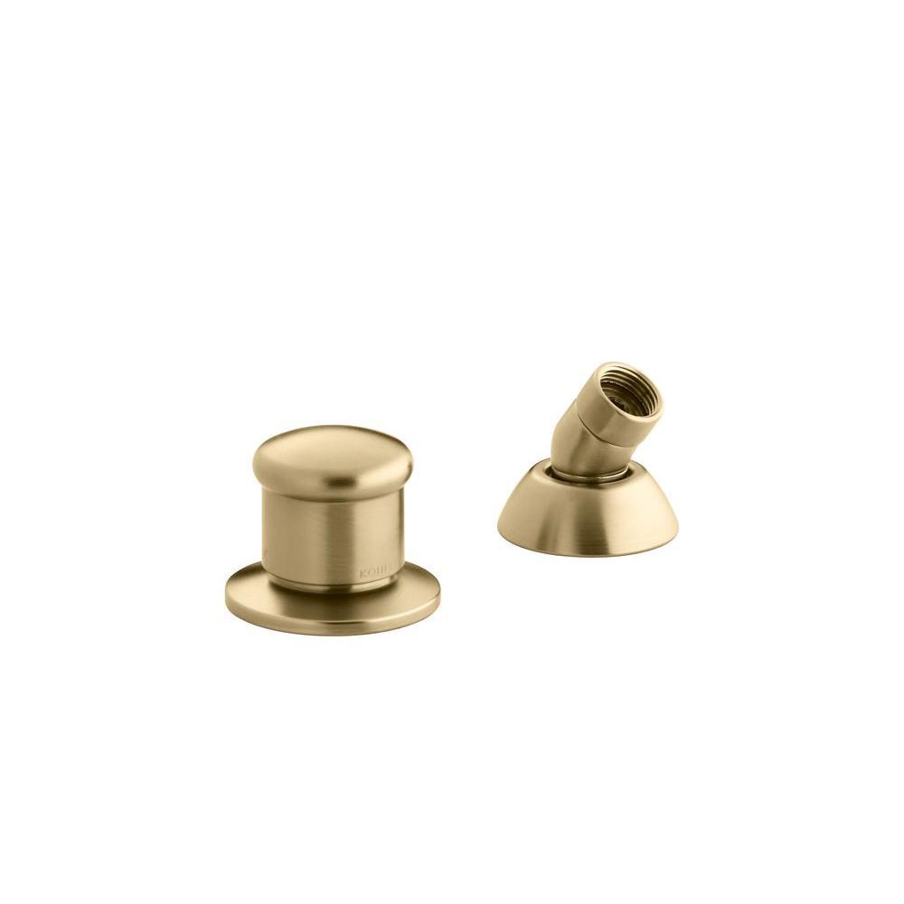 2-Way Diverter Valve and Handshower Hose in Vibrant Moderne Brushed Gold