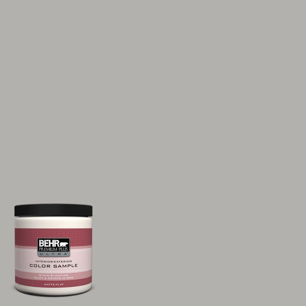 8 oz. #BXC-25 Colonnade Gray Interior/Exterior Paint Sample