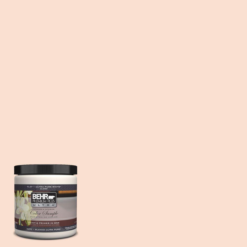 BEHR Premium Plus Ultra 8 oz. #260A-2 Derry Coast Sunrise Interior/Exterior Paint Sample