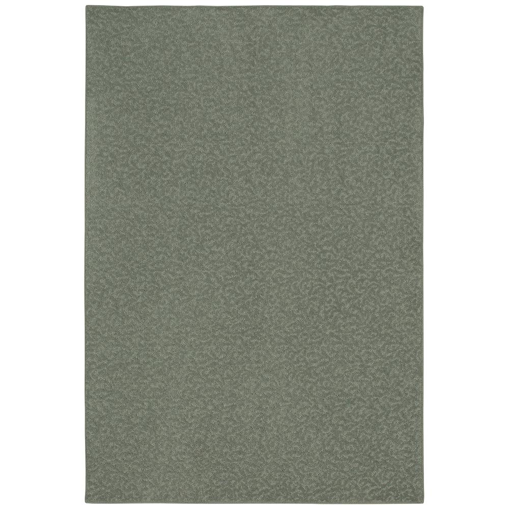 PetProof Pattern Perry Meandering Texture 12 ft. x 15 ft. Bound Carpet Rug