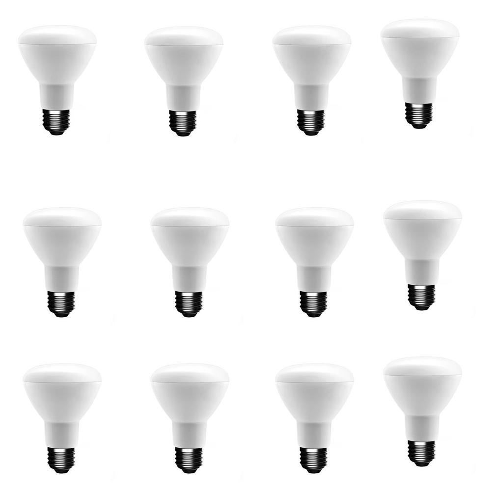 50-Watt Equivalent BR20 Dimmable LED Light Bulb Soft White (12-Pack)