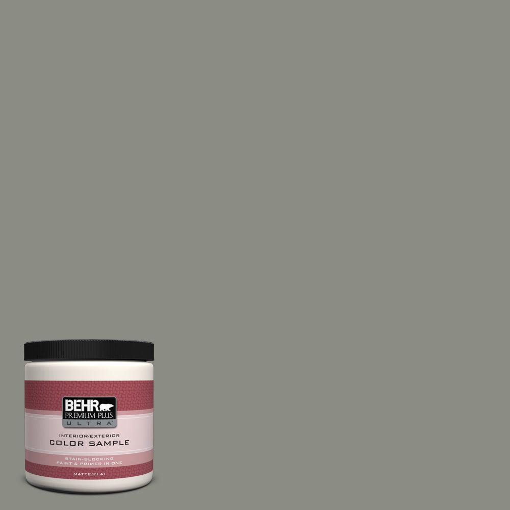 8 oz. #N380-5 Naturalist Gray Matte Interior/Exterior Paint and Primer in