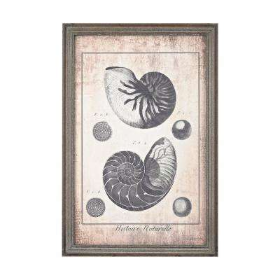 "24 in. x 16 in. ""Shell Print in Blue"" Printed Framed Wall Art"