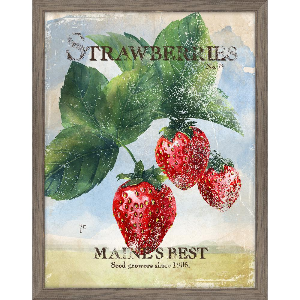Strawberry Fruit Poster Print Gardening Gift Art Kitchen Decor Chef Posters