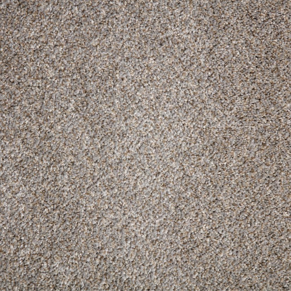 Home Decorators Collection Carpet Sample Trendy Threads