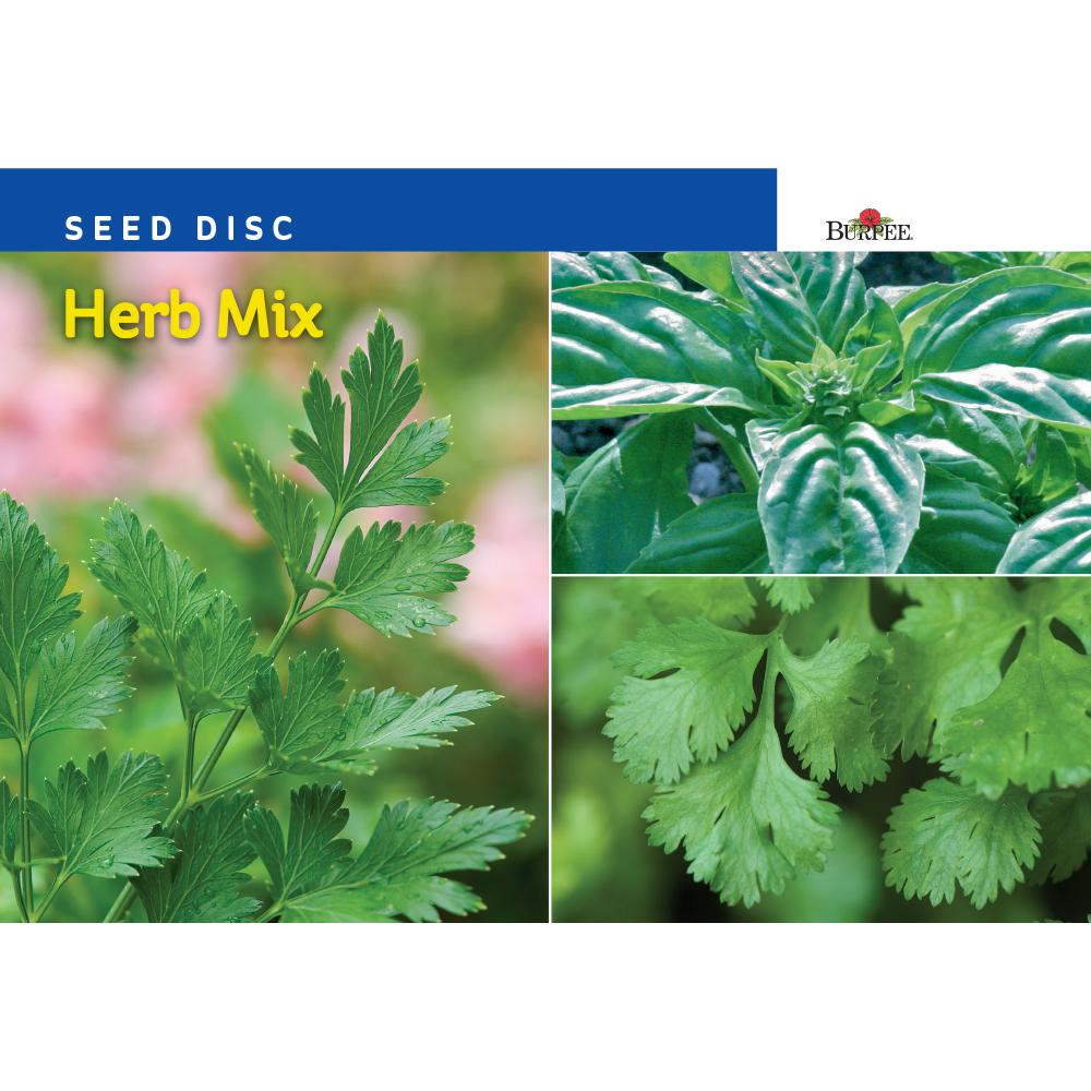 Burpee Seed Disc Herb Mix Seed 67027 The Home Depot