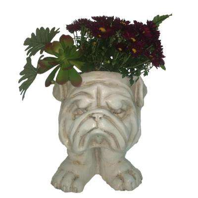 13 in. Antique White Bulldog Muggly Planter Statue Holds 4 in. Pot