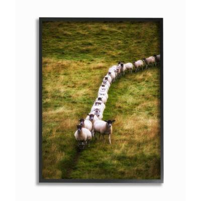 """24 in. x 30 in. """"Sheep Line Farm Landscape Photo"""" by Villager Jim Framed Wall Art"""