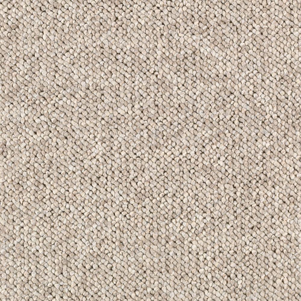 Light Carpet - Carpet Ideas
