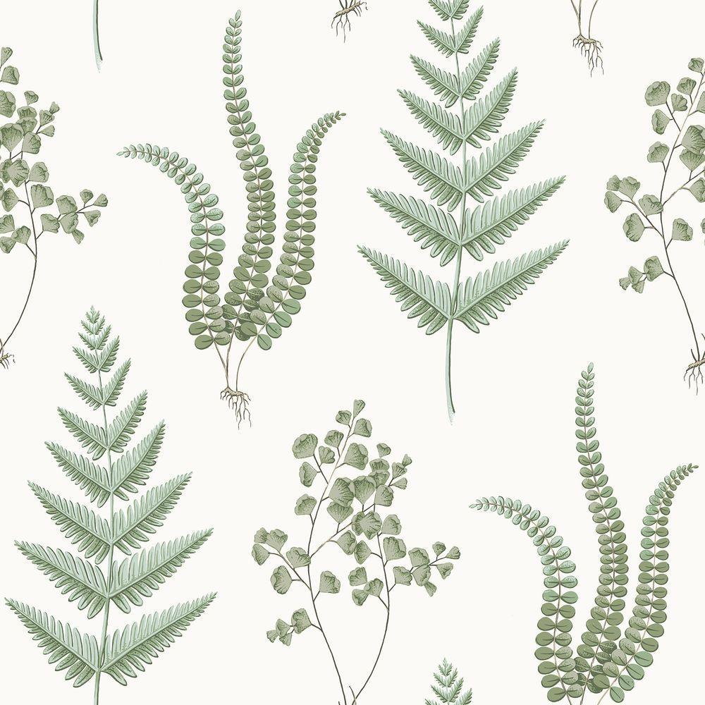 White Herbs Wallpaper