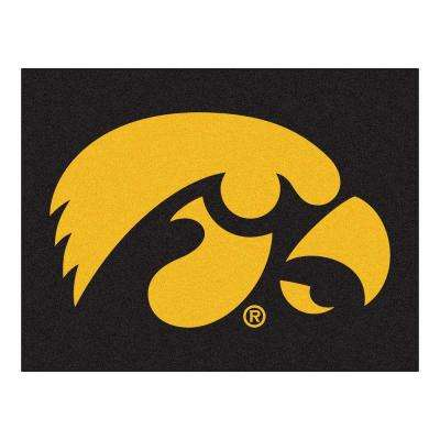 University of Iowa 3 ft. x 4 ft. All-Star Rug