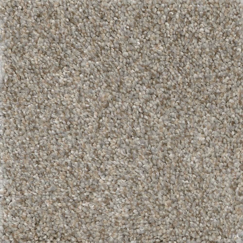 Nimble Creek - Color Jumper Texture 12 ft. Carpet