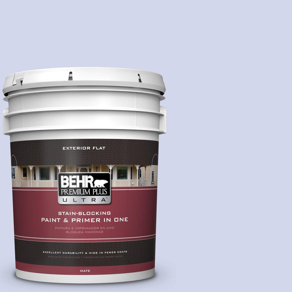 5-gal. #620A-2 Cheerful Whisper Flat Exterior Paint