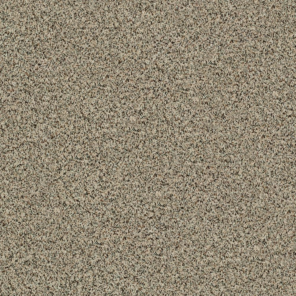 Petproof Maisie I Color Taupe Essence Texture 12 Ft