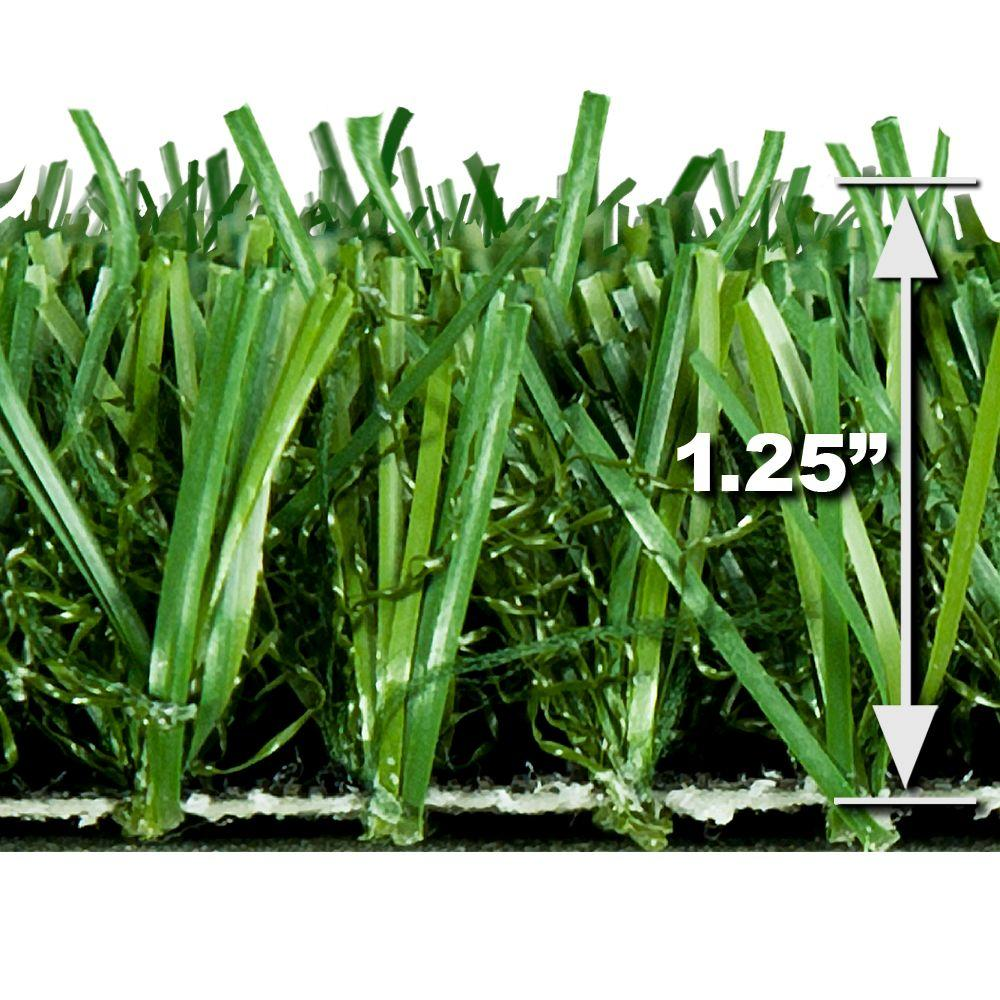 TruGrass Emerald Gold 12 ft. x 75 ft. Artificial Grass Synthetic ...
