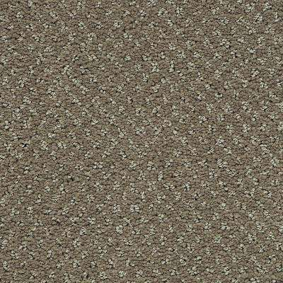 Pretty Penny - Color Highlander Pattern 12 ft. Carpet