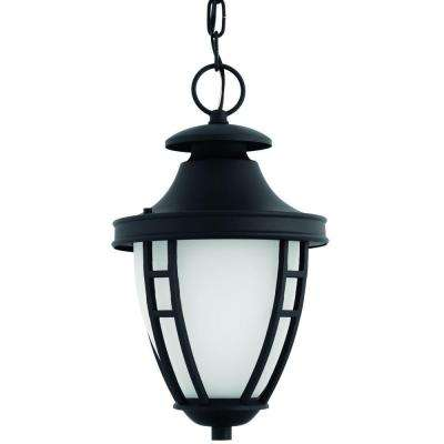 Fairview Collection 1-Light Outdoor Textured Black LED Hanging Lantern