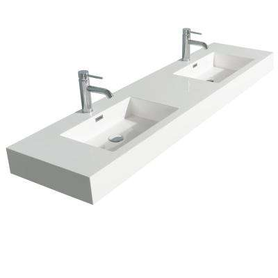 Daniella 72 in. W x 18 in. D Resin Double Basin Vanity Top in White with White Basin