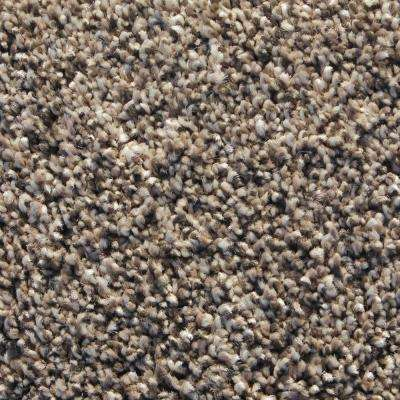 Tailored Sport Coat Texture 24 in. x 24 in. Residential Carpet Tile (8 Tiles/Case)