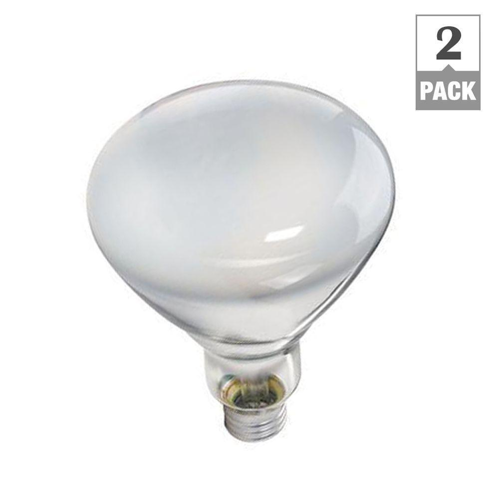 Philips 65-Watt BR40 Incandescent DuraMax Indoor Flood Light Bulb (2 ...