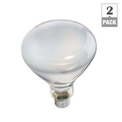 65-Watt BR40 Incandescent DuraMax Indoor Flood Light Bulb (2-Pack)