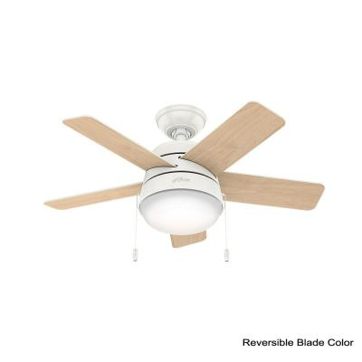 Tarrant 36 in. LED Indoor Fresh White Ceiling Fan with Light Kit