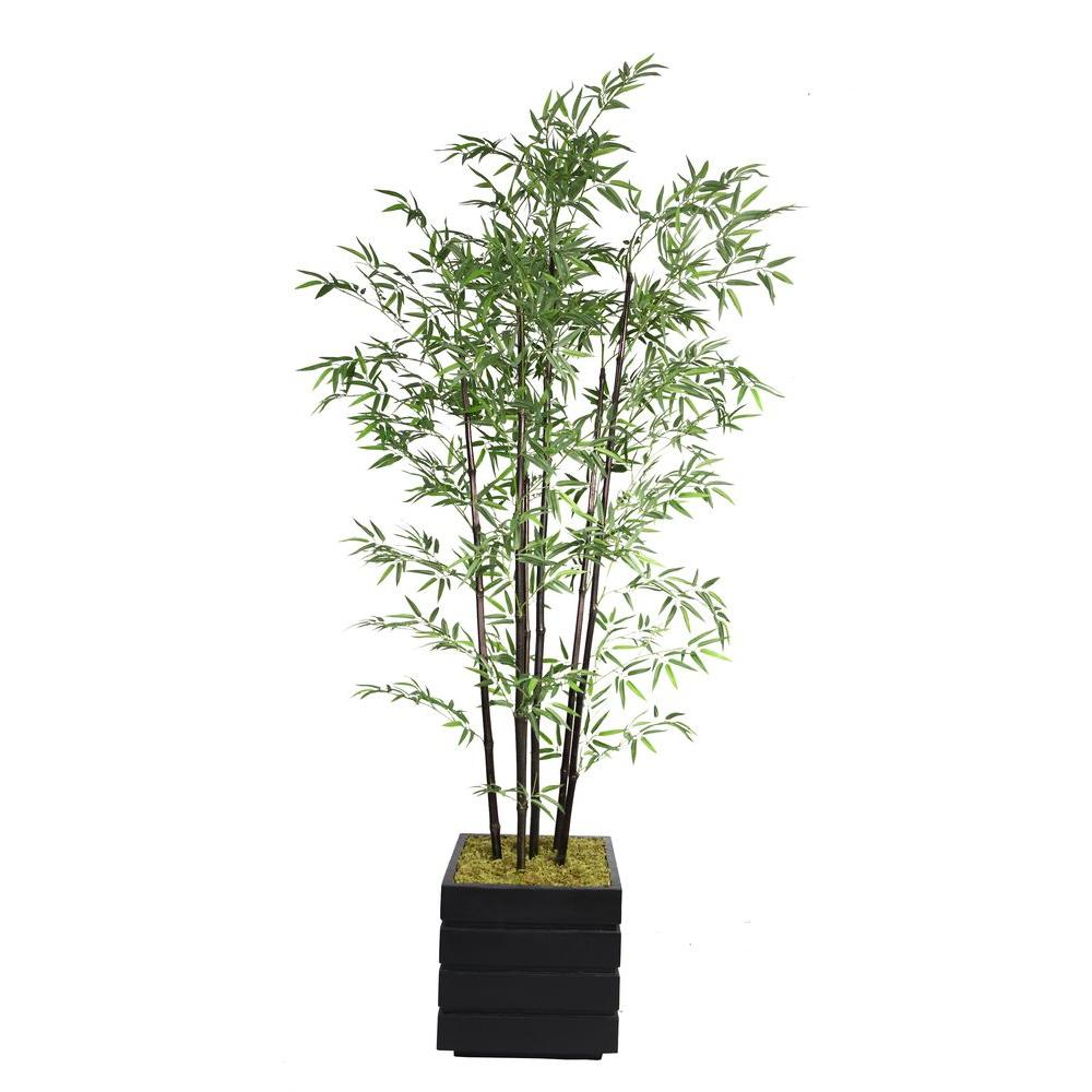 Laura Ashley 78 in. Tall Black Bamboo Tree in 14 in. Fibe...