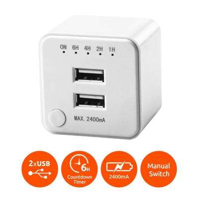 Dual USB Port Wall Charger with Timer