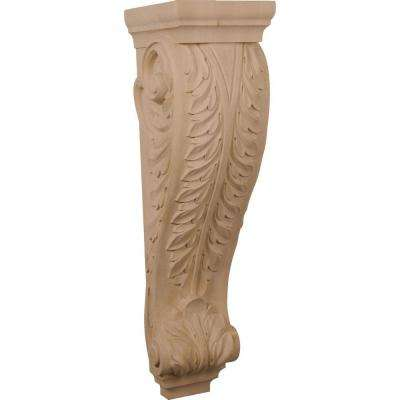 10 in. x 9 in. x 34 in. Unfinished Rubberwood Super Jumbo Acanthus Wood Corbel