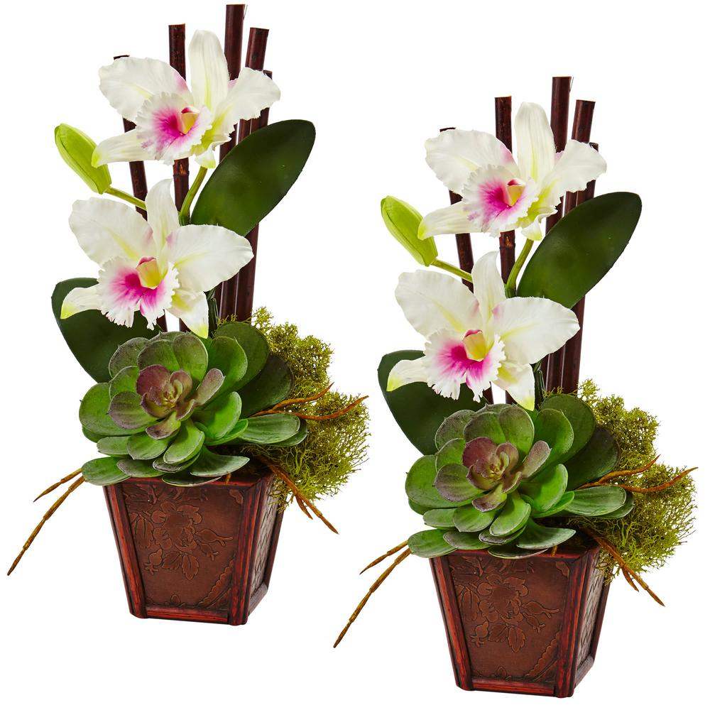14.75 in. Cattleya Orchid and Succulent Arrangement in White (Set of