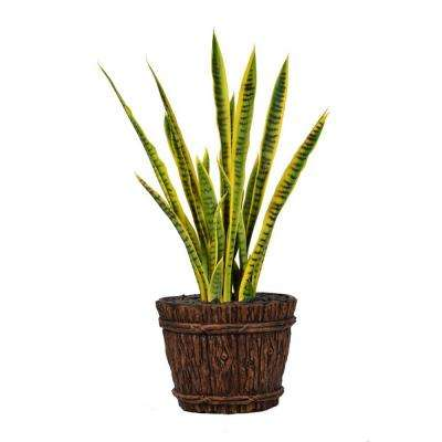 43 in. Tall Snake Plant in Planter