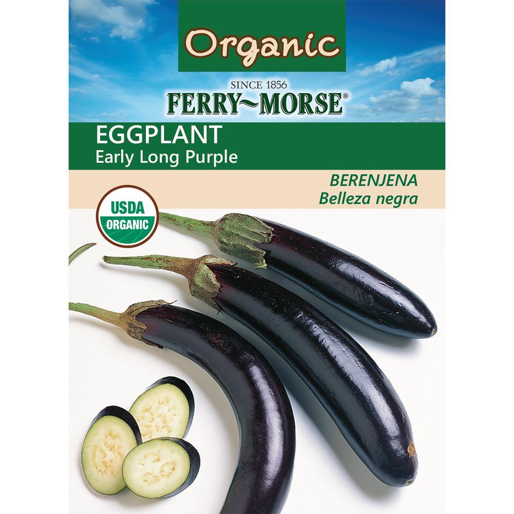 Eggplant Long Purple Early Organic Seed