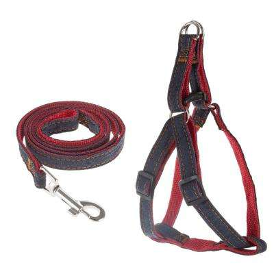 Medium Dog Harness and Leash Set