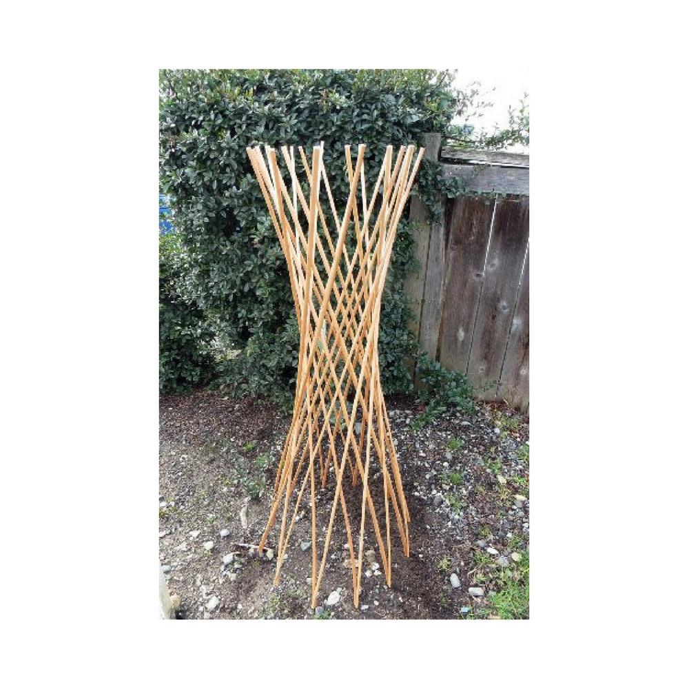 60 in. H Willow Funnel Trellis