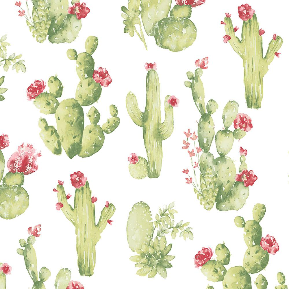 Norwall Cactus Wallpaper Ck36630 The Home Depot